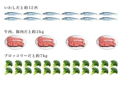 資生堂・コエンザイムQ10・食品