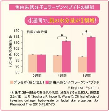 コラーゲン&ヘスペリジン・低分子コラーゲンペプチドの検証